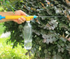 Bottle Top Pressure Sprayer